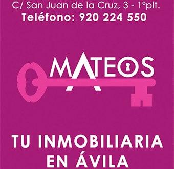 Inmobiliarias Mateos